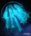 LED照明跨界智能家居 创新科技主导产业发展