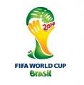 瑞思可集团赢得世界杯体育场安保项目合同