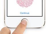 指纹与指静脉识别的市场应用情况