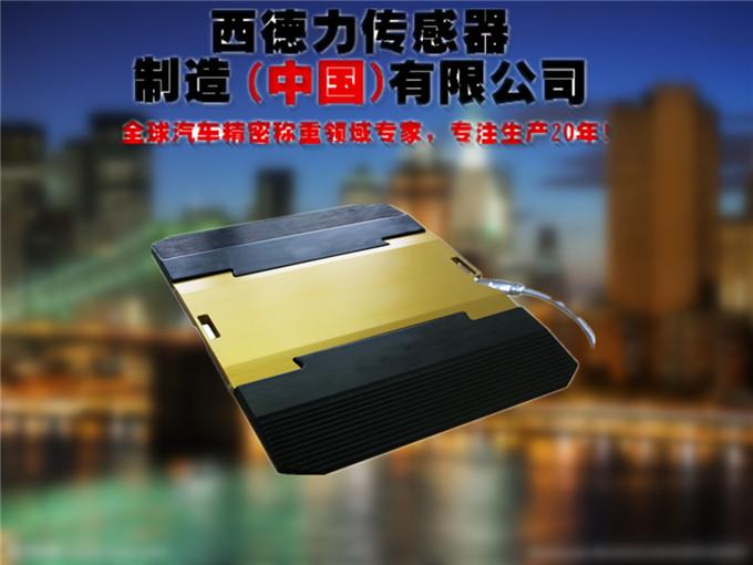 便携式地磅仪价格_无线地磅仪厂家_汽车轴重秤图片