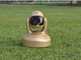 iFamCare小觅智能逗宠监护器评测