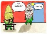 """如果你是做安防的,这个夏天让你""""透心凉,心飞扬""""(一)"""