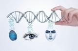 生物识别技术成本在降低 应用方兴未艾