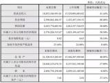 大华2017年业绩报告