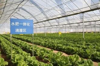智慧农业如何助力农村经济发展?