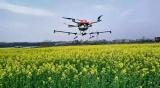 AI+IOT为农业赋能