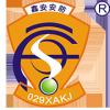 陕西鑫安安防科技集团有限责任公司