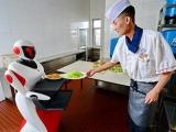 人形机器人商业化落地成最大难题