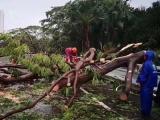安防与台风救援不得不说的事……
