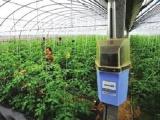 农业物联网助力乡村振兴