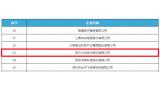 大华多年荣列中国企业软件收入前百