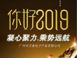 2018艾索电子年度报告