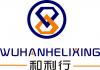 武汉和利行信息技术有限公司