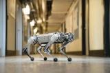 2026年可达20亿美元 微型机器人潜力无限!