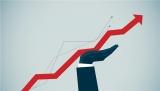 H1净利润约12.4亿元 大华股份转型在途