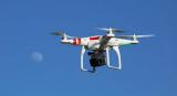 监控与无人机齐上阵 安防如何助力动物保护?