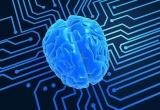总投资450亿元 长三角最大人工智能超算中心