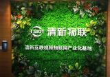 清新互联视频物联网产业化基地正式落成启用