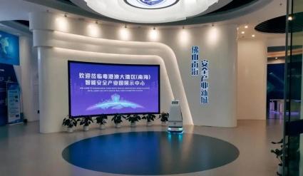 乘粤港澳大湾区东风,智能安全产业发展再创佳绩